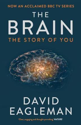 ISBN: 9781782116615 - The Brain
