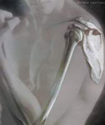 Human Anatomy Frederic Martini 9780130491787 Blackwells