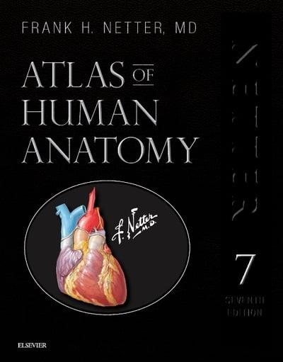 Atlas Of Human Anatomy Frank H Netter Author 9780323554282