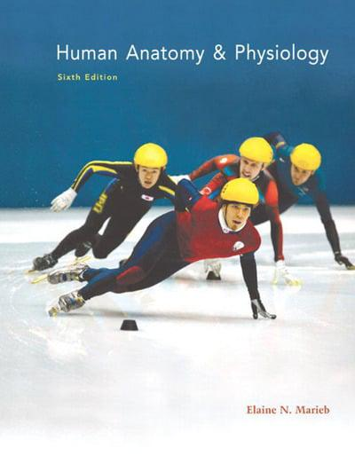 Human Anatomy & Physiology with Anatomy & Physiology Coloring ...