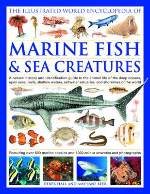 The Illustrated World Encyclopedia Of Marine Fish Sea Creatures Amy Jane Beer 9780754817253 Blackwell S