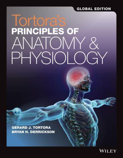 Tortoras Principles Of Anatomy Physiology Global Edition