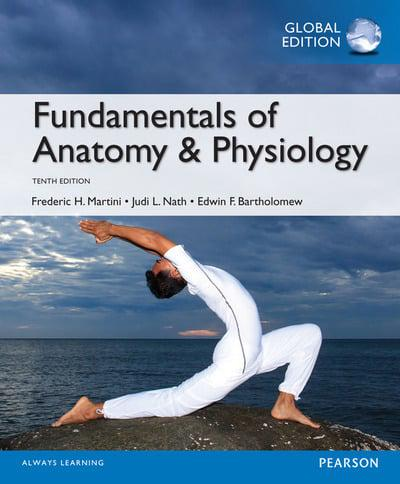Fundamentals of Anatomy & Physiology : Frederic H. Martini (author ...