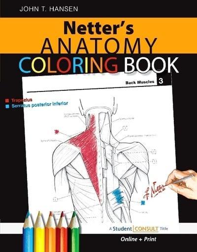 Netter\'s Anatomy Coloring Book : John T Hansen (author ...