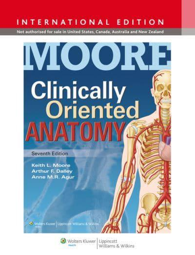 moore clinically orientated anatomy pdf