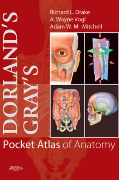 Dorlandsgrays Pocket Atlas Of Anatomy Richard Drake Author