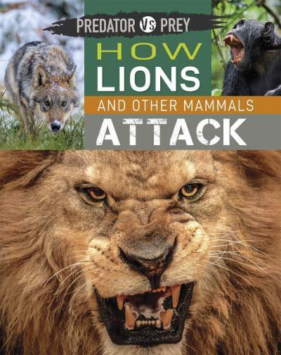 Predator Vs Prey: How Lions and Other Mammals Attack!