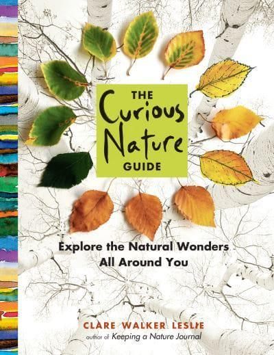 Jacket The Curious Nature Guide
