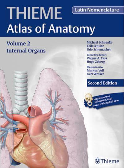 Internal Organs Thieme Atlas Of Anatomy Latin Nomenclature