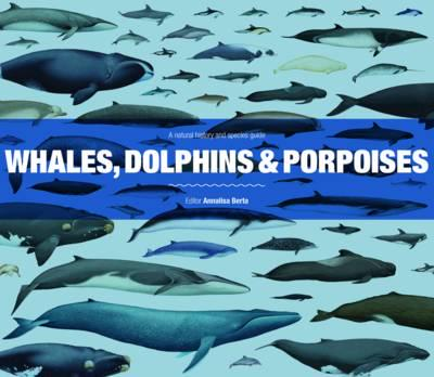 Whales Dolphins And Porpoises A Natural History And Species Guide