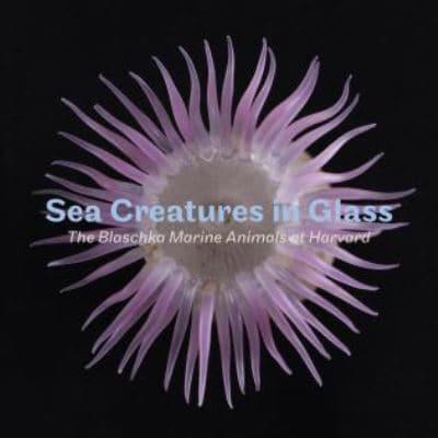 Sea Creatures In Glass Florian Huber 9781785510434