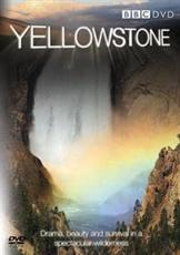 ISBN: 5051561028588 - Yellowstone: Tales from the Wild
