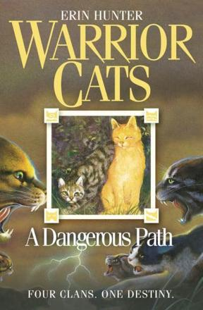 ISBN: 9780007140060 - A Dangerous Path (Warrior Cats, Book 5)