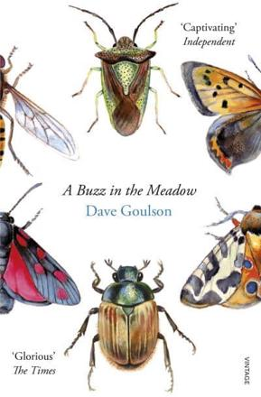 ISBN: 9780099597698 - A Buzz in the Meadow