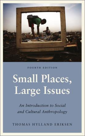 ISBN: 9780745335933 - Small Places, Large Issues
