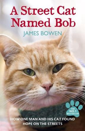 ISBN: 9781444737110 - A Street Cat Named Bob