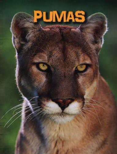 Pumas-by-Charlotte-Guillain-author