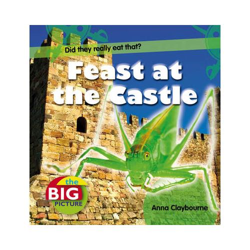 Feast-at-the-Castle-by-Anna-Claybourne