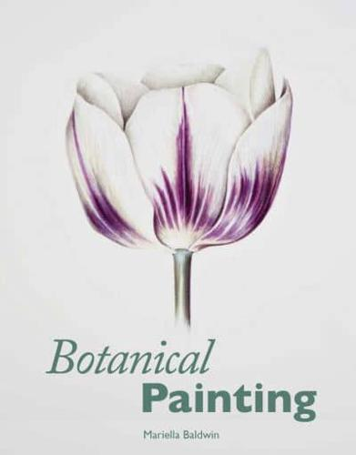 Botanical-Painting-by-Mariella-Baldwin