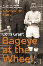 ISBN: 9780099552390 - Bageye at the Wheel
