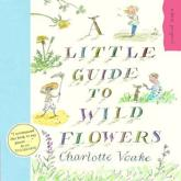 ISBN: 9781903919118 - A Little Guide to Wild Flowers