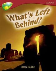 Oxford Reading Tree: Level 15: TreeTops Non-Fiction: What's Left Behind?