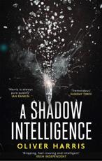A Shadow Intelligence