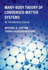 Many-Body Theory of Condensed Matter Systems