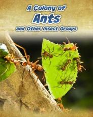 A Colony of Ants and Other Insect Groups