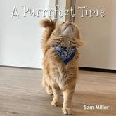 A Purrrfect Time
